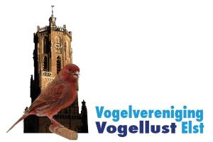 Jaarlijkse vogeltentoonstelling 9 tm 11-11, De Pas 1 te Elst