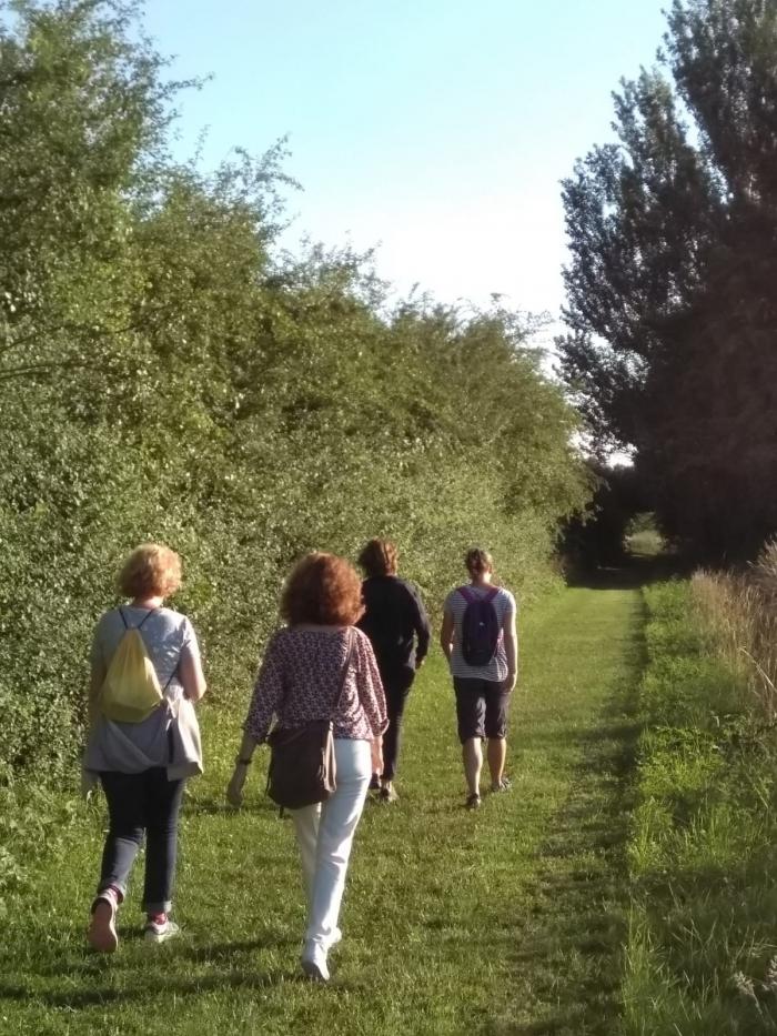 Mindful Walk Cursus
